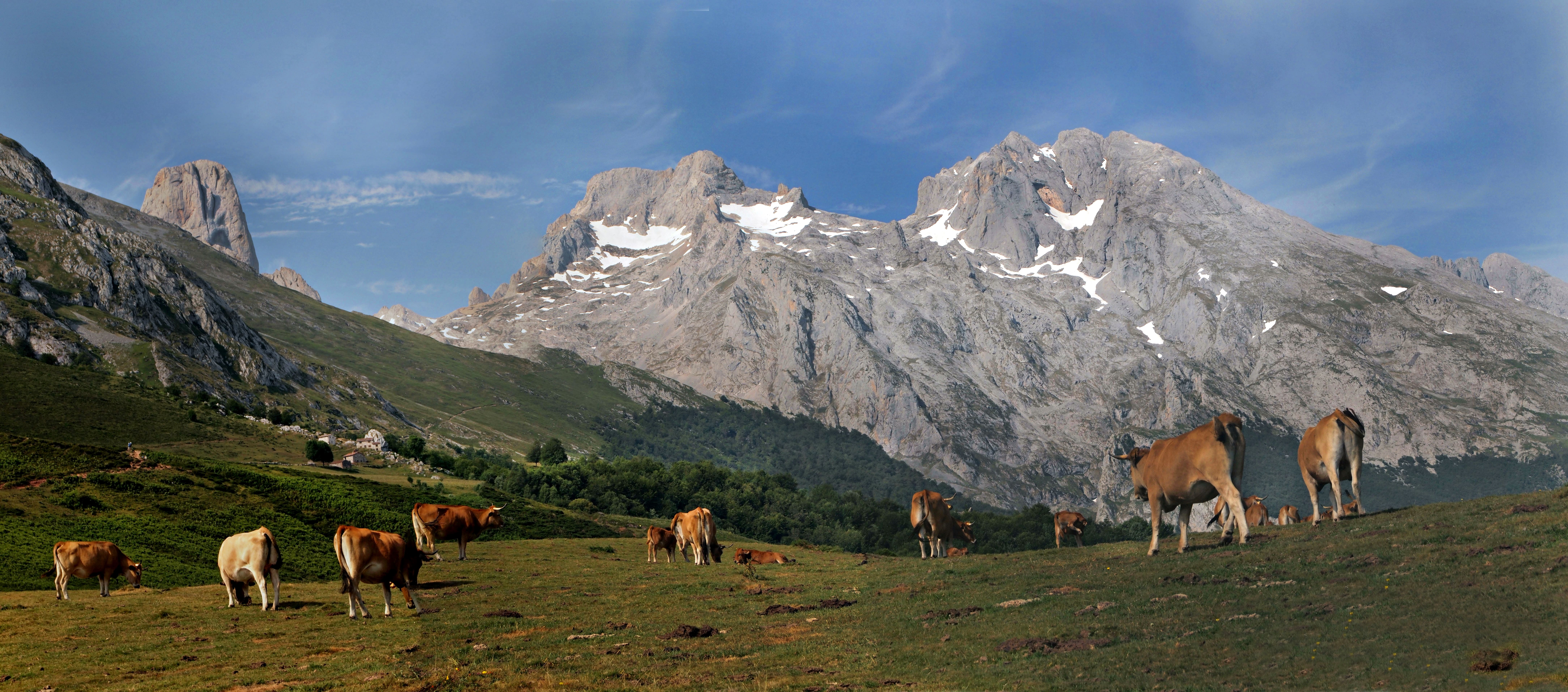 100 years of the Picos de Europa National Park